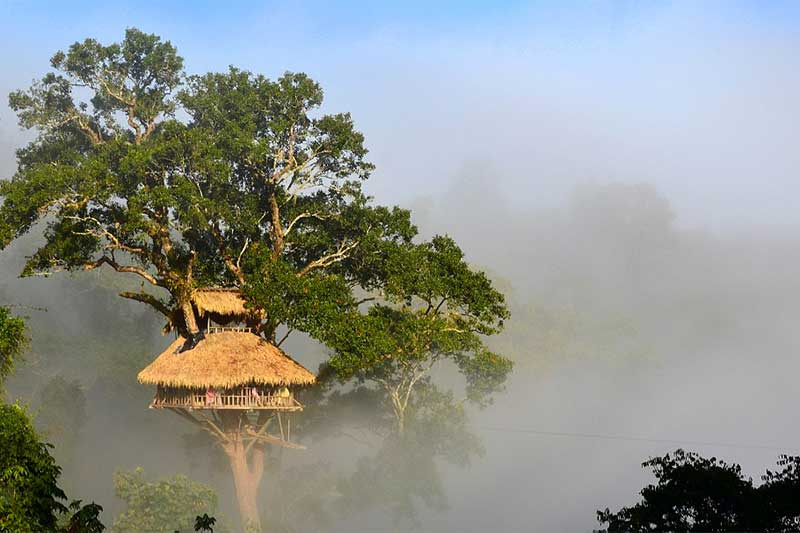 Bokeo Nature, Laos
